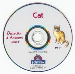 The Dissection & Anatomy of the Cat (DVD)